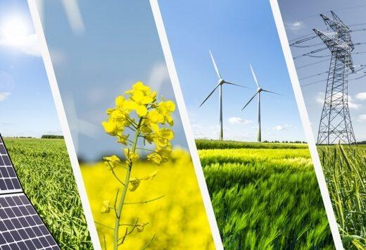 Tại sao lại sử dụng năng lượng tái tạo