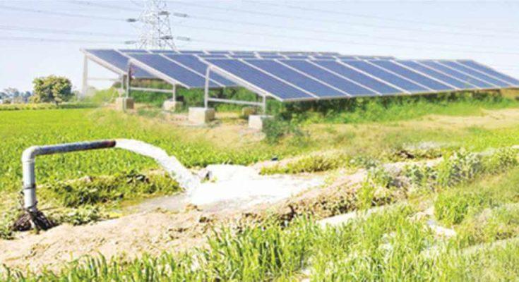 bơm điện mặt trời