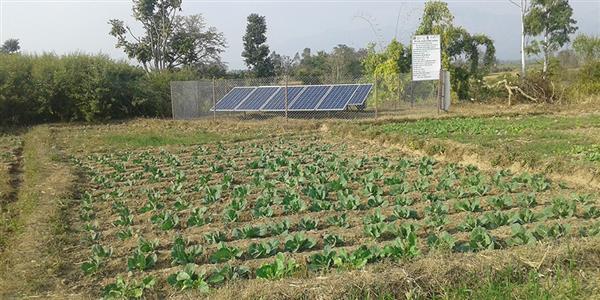 Hệ thống tưới năng lượng mặt trời cho nông nghiệp